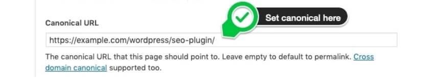 Exempel på canonical url i WordPress och Yoast